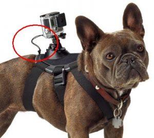 Posizione del laccetto di sicurezza sull'attacco della GoPro