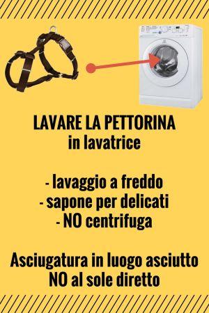 Lavaggio pettorina infografica